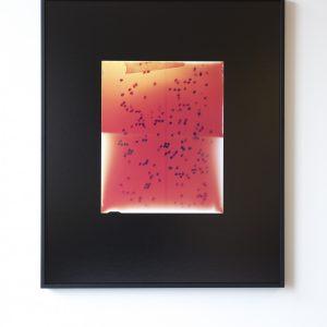 Dries Segers: 'Études Australes (2)' (2018)