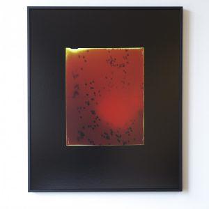 Dries Segers: 'Études Australes (4)' (2019)
