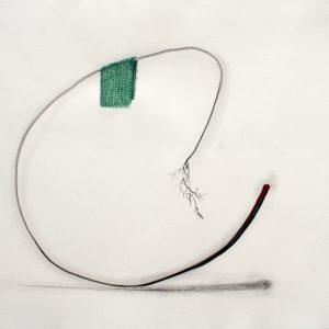 Johan Gelper: 'Botanical' (2018)