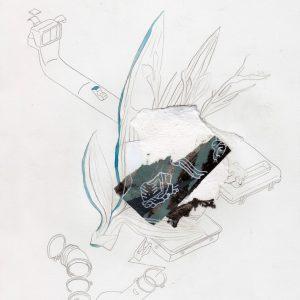 Johan Gelper: 'Botanical' (2015)
