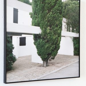 Sarah Van Marcke: 'La Grande-Motte (Arbre)' (2015)