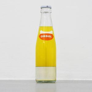 Roeland Tweelinckx: 'Ordal' (2019)