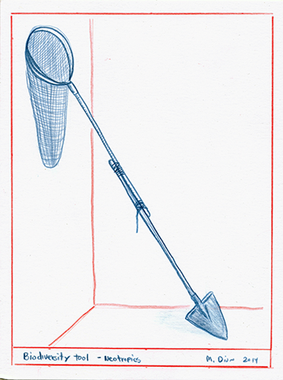 Mark Dion, Biodiversity tool - Neotropics, 2014, red and blue pencil on paper, 15.2x20.3cm