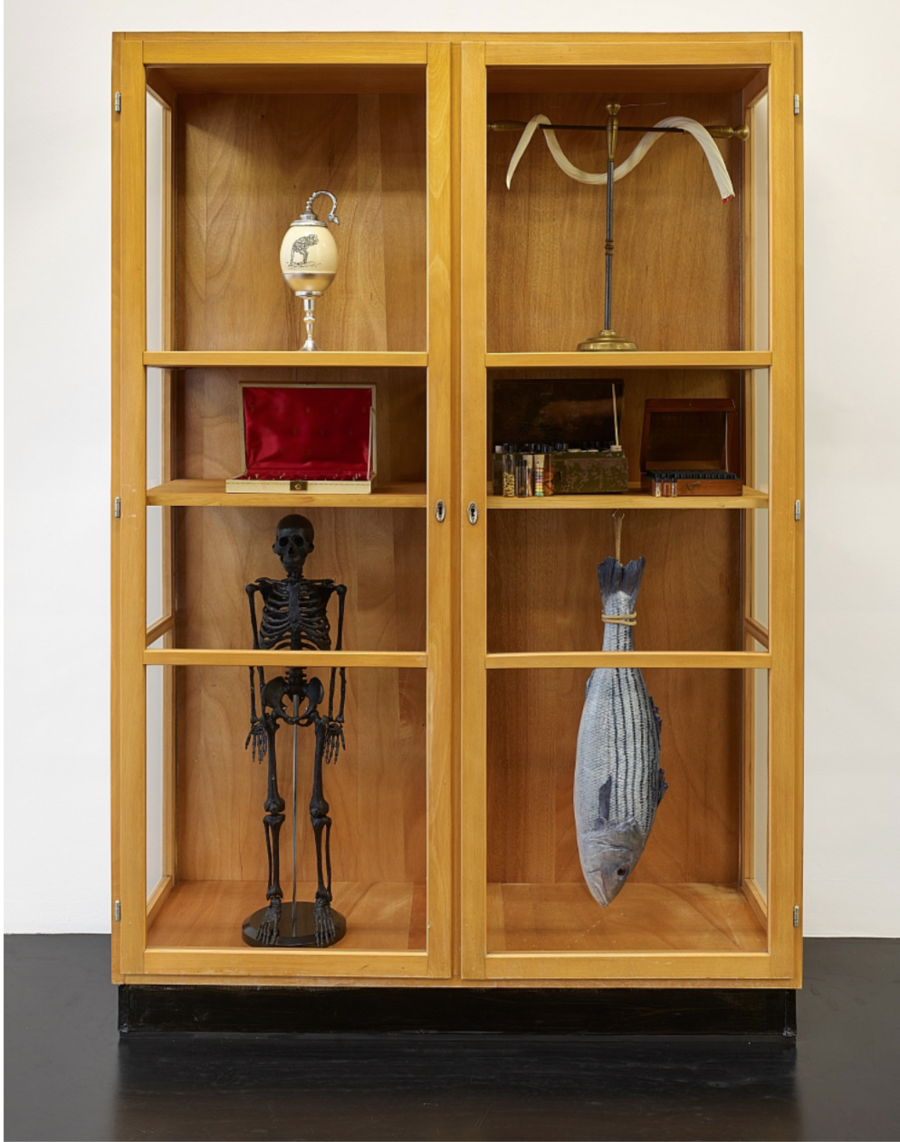 Mark Dion, Cabinet of Marvels, 2019, Mixed media, 190h x 130w x 48d cm