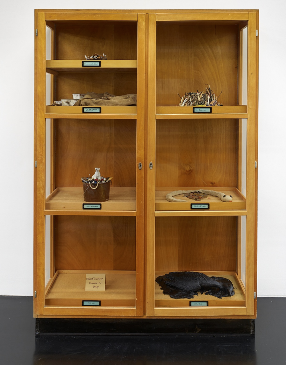 Mark Dion, Cupboard of Natural Wonders, 2019, Mixed Media, 190h x 130w x 48d cm